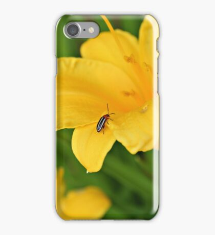Finding The Beauty Inside iPhone Case/Skin