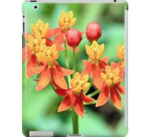 Butterfly Weed iPad Case/Skin