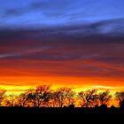 Texas Sunset by MBallard