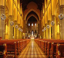 St Patricks Cathedral  by DianaC