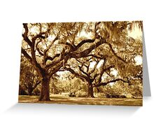 The Mighty Oaks Greeting Card