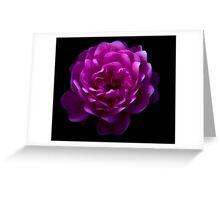 Moonlit Rose Greeting Card