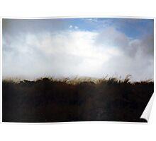 Field, Scotland Poster