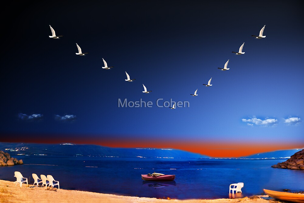 The Sea of Galilee by Moshe Cohen
