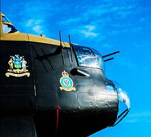Just Jane just waiting to fly by SteveWard