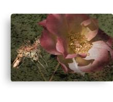 Rust 'n Roses ~ #11 Canvas Print