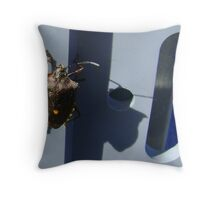 Forest Bug (Pentatoma rufipes) Throw Pillow