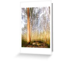 The Energy of Trees Greeting Card