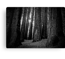 TOOTHPICKS FOR GIANTS Canvas Print