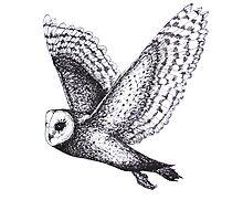 Barn Owl by WildheARTspace