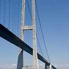 Bridges in Denmark - Great Belt Bridge by imagic