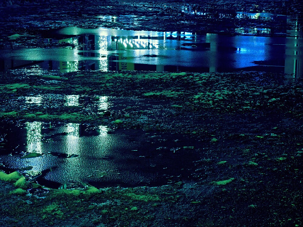 Blue Reflections by flogs
