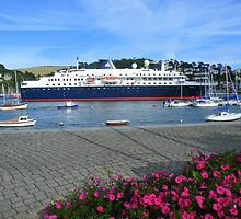 Devon: Docked at Dartmouth by Rob Parsons
