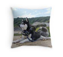 Baked Alaskan Throw Pillow