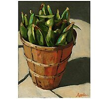 Summer Corn - vegetable still life painting Photographic Print