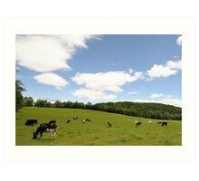 Rolling hillside---pasture in VT Art Print