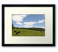 Rolling hillside---pasture in VT Framed Print