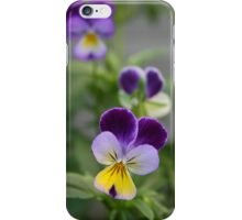 Don't Call Us Pansies iPhone Case/Skin