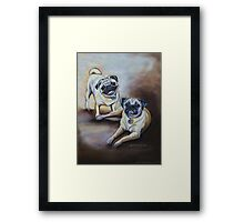 Pug Pair Framed Print