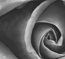 Black & Grey Rose - Dry Brush Oil Painting Sticker