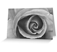 Black & Grey Rose - Dry Brush Oil Painting Greeting Card