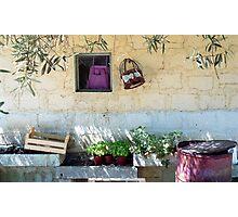 Pachino Tomato Growers Front Yard Photographic Print