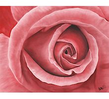 Close Up Rose - Dry Brush Oil Painting Photographic Print