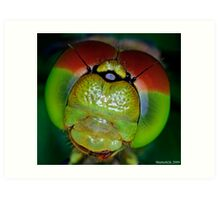 The Eyes of a Dragon Art Print