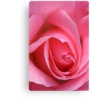 TIS the last Rose of Summer Canvas Print