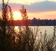 Brooklyn Waterfront by Katerina Tassiopoulos