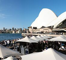 Sydney Harbour Panorama by David Tait