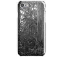 Morning Trees  iPhone Case/Skin