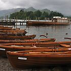 Rowing Boat Line by Andrew Cryer