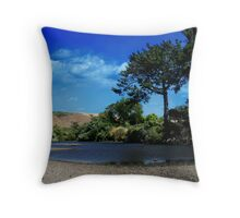 Streaming Throw Pillow