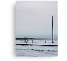 wire in  Canvas Print