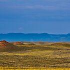 Prairie by Hal Smith