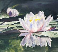 Waterlily's by J-C Saint-Pô