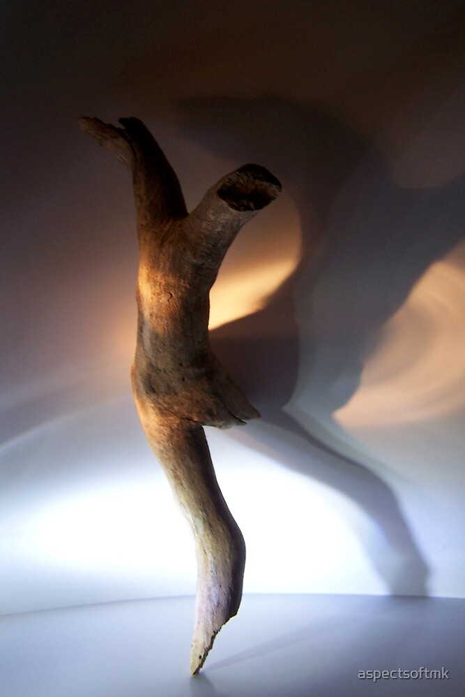 wood, you dance.... by aspectsoftmk