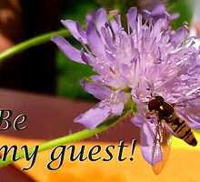 Bee my guest! by bubblehex08