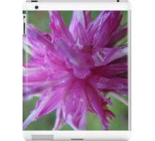 Pink flower macro iPad Case/Skin
