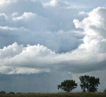 Stormy Sky by Crystal Zacharias