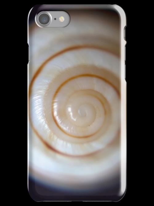 Sea Shells By The Seaside by Bryan Freeman