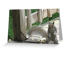 Put up your dukes!!!!  This popcorn is MINE!!!   Greeting Card