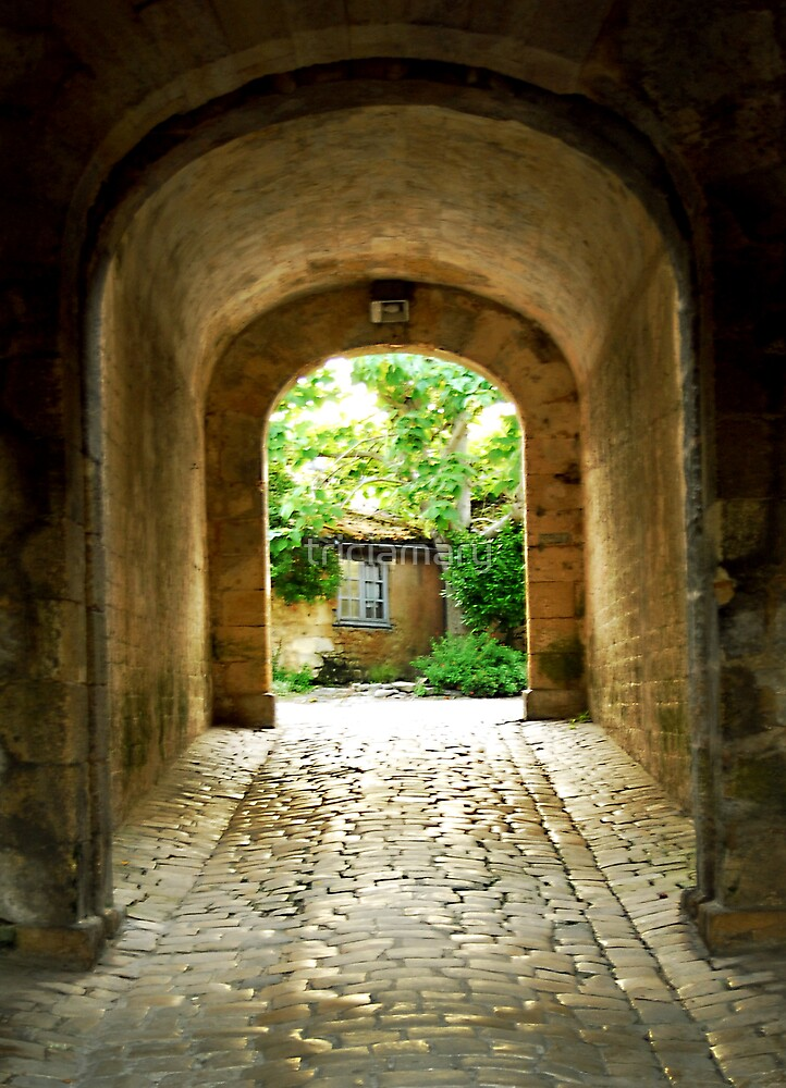 Citadel tunnel, Blaye by triciamary
