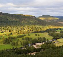 Royal Deeside by Duncan Shaw