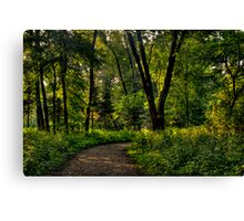The Path to Nature Canvas Print