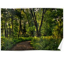 The Path to Nature Poster