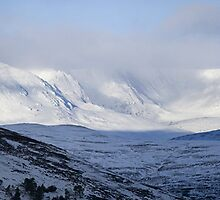 Cairngorms Winter by Duncan Shaw