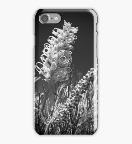 Gorgeous grevilleas iPhone Case/Skin