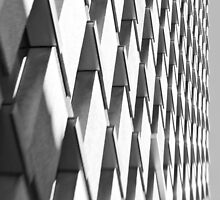 Zebragonals! - Sydney - Australia by Bryan Freeman